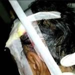 Kepala Bocor dan Mata Bengkak, Demonstran STM Tetap Tegar Dalam Aksi