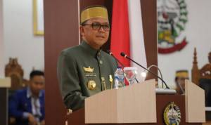 Peringati Hari Jadi Sulsel, Gubernur Minta Dilakukan Kolaborasi dan Sinergi