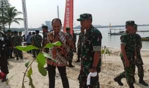 5000 Pohon Ketapang Ditanam Di Pesisir Pantai Area PLTU Banten 2 Labuan